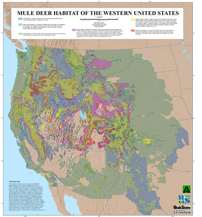 mule deer distribution and habitat in the western united states map courtesy of remote sensing and gis laboratory mule deer of the western united states