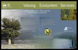 Valuing Ecosystem Services display