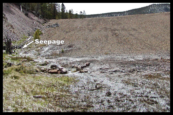 seepage at the abutment contact groin can lead to dam failure