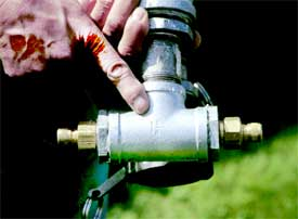Photo Of Someone Holding A Garden Hose Quick Coupler Manifold.