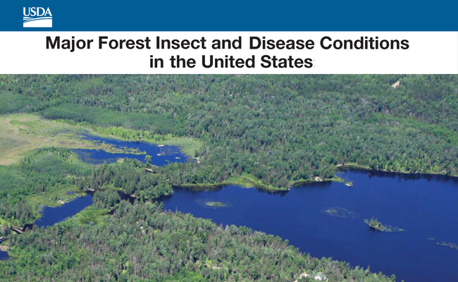 Publication cover of Major Forest Insect and Disease Conditions in the United States: 2013