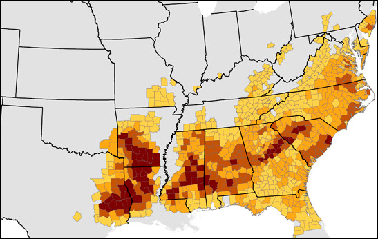 Southern Pine Beetle Hazard Map