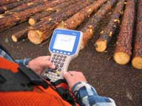 Picture of a log scaler entering data on an Allegro Juniper portable data recorder. Logs are laying in the backgound.