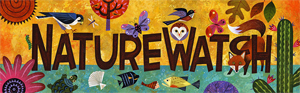 Forest Service NatureWatch illustrated icon.