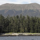 A senic picture on the Tongass National Forest.  One of a mountain in the background and the ocean in the foreground.