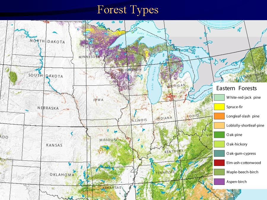 USDA Forest Service RWU NE Biological Trends Forests Page - Forest map us 1820