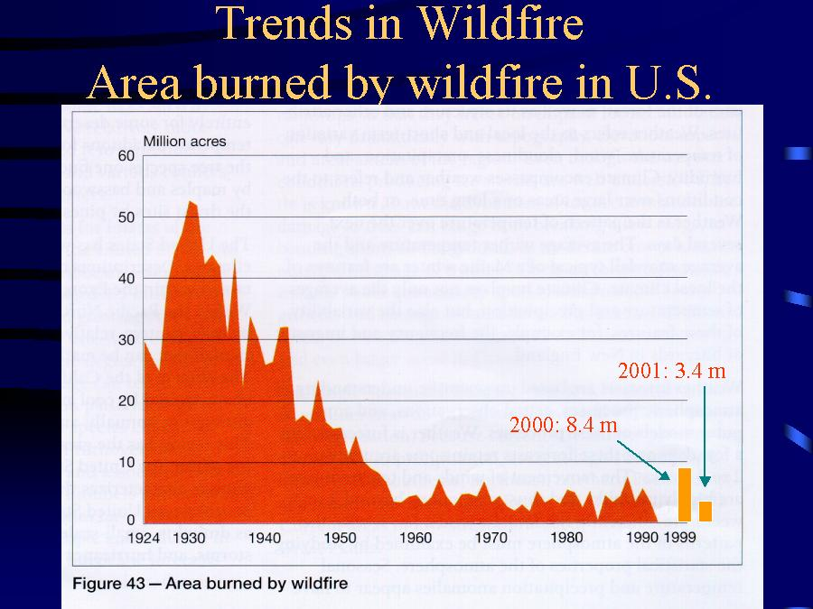 Intresting titles for an essay on wildfires?