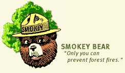 "Image: Smokey Bear with a caption ""Only you can prevent forest fires"""