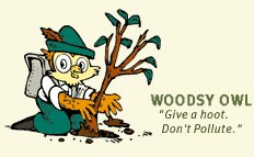 "Image - Woodsy Owl plant tree with a caption - ""give a hoot. don't pollute"""