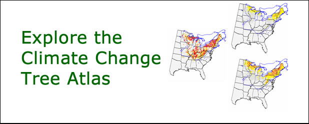 Climate Change Tree Atlas