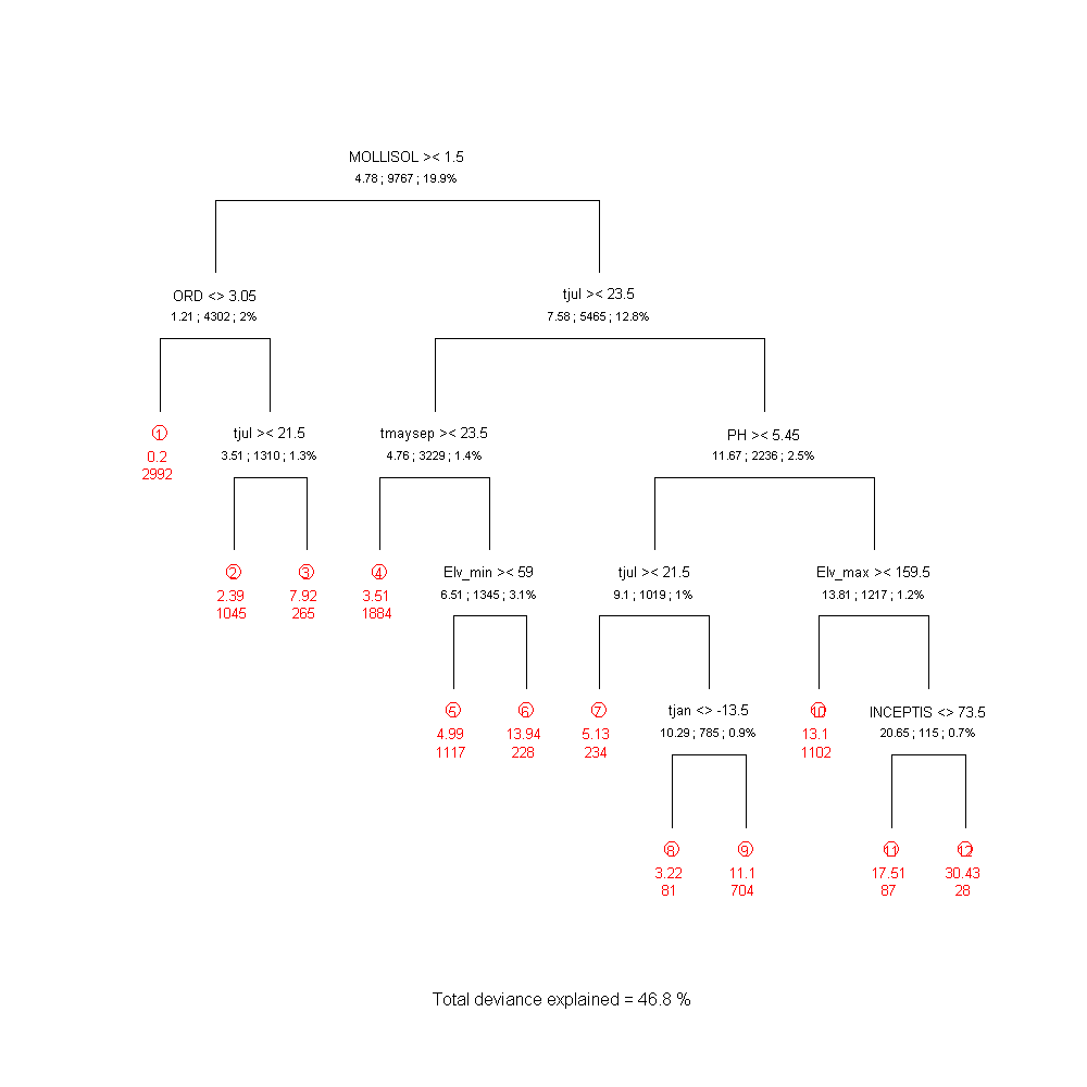 The regression-tree diagram for red maple