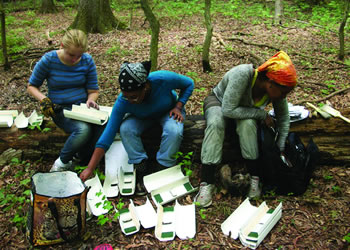 Sustainability Science Fellow Melanie Allen is studying small mammals to fi nd out if they can be used as a Rapid Assessment Tool to measure forest fragmentation health. (Left to right: Melanie Allen, Emily Giraud, and Njeri Kimani)