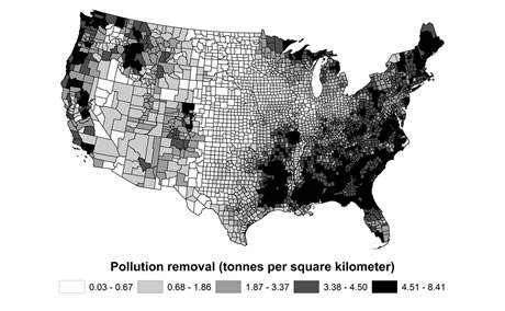 Map showing estimated removal per square kilometer of land (tonnes km2) of all pollutants (NO2, O3, PM2.5, SO2) by trees per county in 2010.  Map by USDA Forest Service