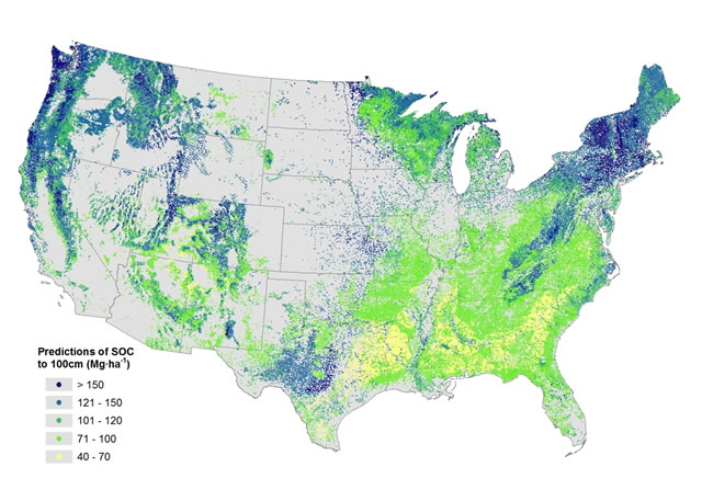 Predictions of soil organic carbon stocks (0-100 cm) for all Forest Inventory and Analysis plots in the conterminous United States.
