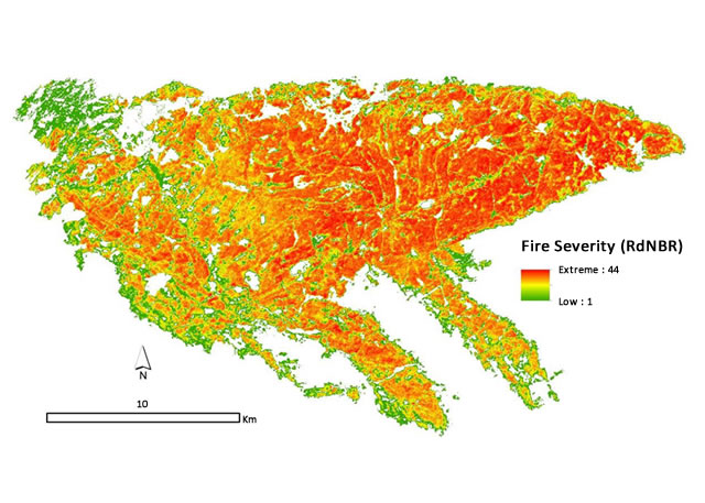 Map of fire intensity