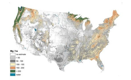 A depiction of estimated carbon density (Mg/ha) in forested ecosystems in conterminous United States, 2001-2009 created using FIA data.