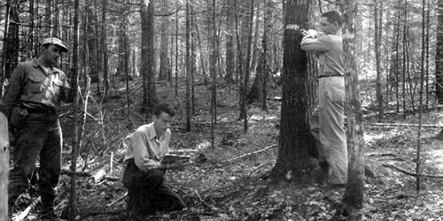Scientists collect data on Penobscot EF. Photo circa 1950s.