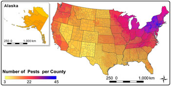The Alien Forest Pest Explorer is a web tool that gives users a county-by-county look at geographical distributions of damaging forest invasive pests throughout the nation. U.S. Forest Service image.