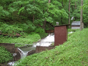 Weir WS4 on the Fernow Experimental Forest