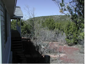 [image] A picture of mature pinyon-juniper and mountain brush adjacent to a residence in the wildland urban interface zone
