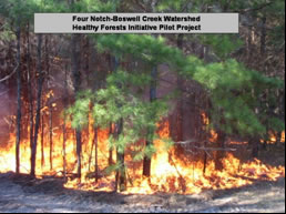 [graphic] An image of the Four Notch-Boswell Creek Watershed Healthy Forests Initiative Pilot Project.  The image shows a fire burning in a stand of trees.