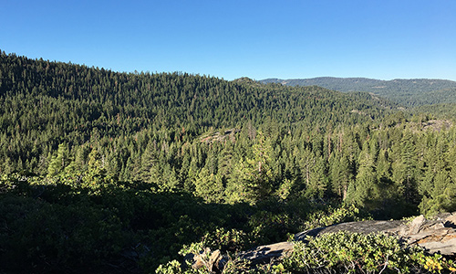 A view of the Caples Creek Watershed on the El Dorado National Forest.