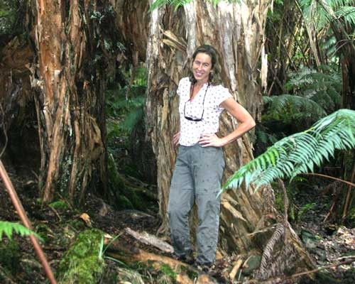 A photo of Susan Cordell standing next to a large koa in the Laupahoehoe Experimental Forest.
