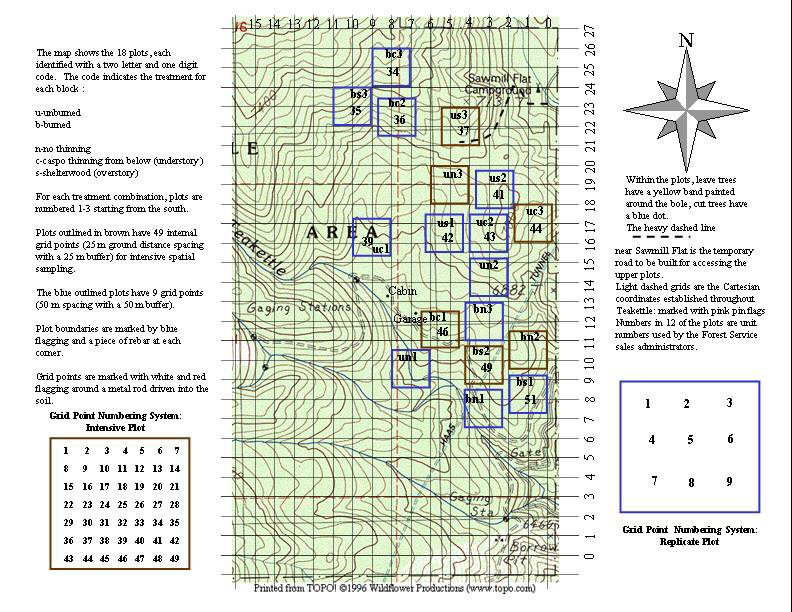 photo of Teakettle plot map