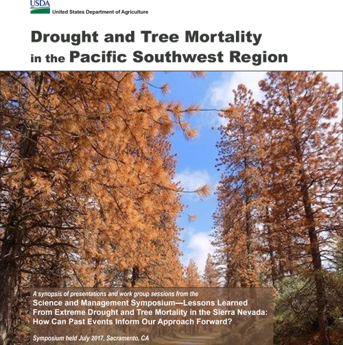 Cover image for the publication Drought and Tree Mortality in the Pacific Southwest Region.