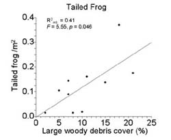 Plot of tailed frog and large woody debris cover