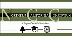 [Graphic]: Northern California Consortium Banner.