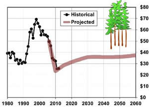 Hover to pause, click to view — Economic Model Predicts U.S. Forest Product Markets and Timber Demand Trends