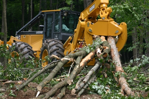 Hover to pause, click to view — Guidelines for Forest Biomass Utilization