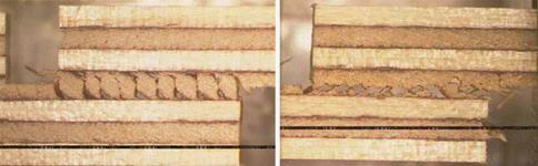 Hover to pause, click to view — Success of Wood Veneers Influenced by Harvesting Season and Temperature: Plywood Performance and Failure: A New Understanding