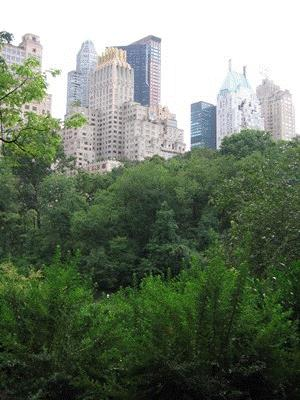 Hover to pause, click to view — Carbon Sequestration by Urban Trees Valued in the Billions of Dollars Annually