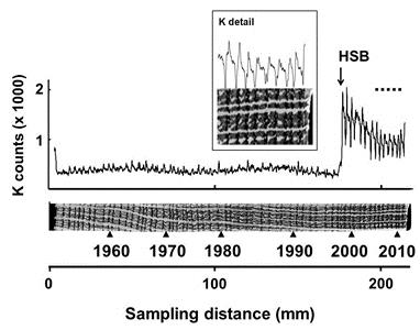 Hover to pause, click to view — Chemical Analysis of Precisely Dated Tree Rings Used in Environmental Forensics