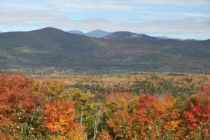 Hover to pause, click to view — Big Changes Ahead Expected for Northern Forests