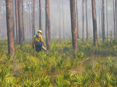 Hover to pause, click to view — Statistical Models Improve Predictions of Fuel Consumption and Emissions During Prescribed Fires