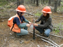 Click to view — Multi-host Fungi May Facilitate Migrations of Pine Species with Climate Change
