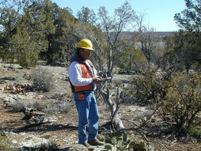 Hover to pause, click to view — Annual Inventory of New Mexico\'s Forests More Accurate Thanks to Stratification Key