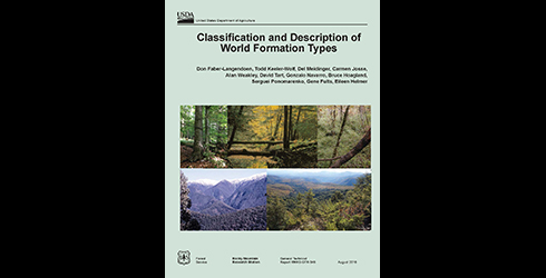 Forest service research paper