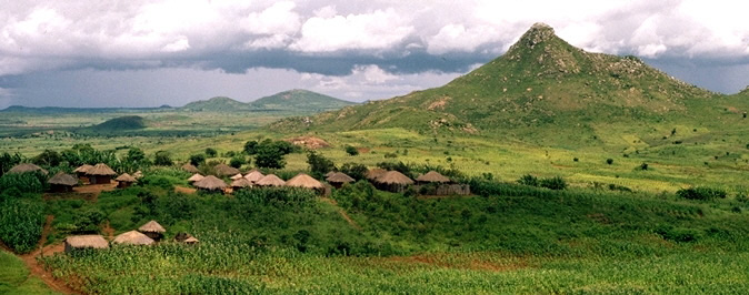 Agroforestry landscape in southern Malawi