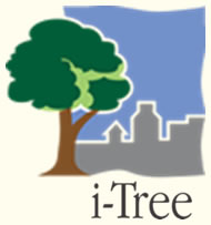 link to i-Tree Software Suite