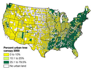 Percent tree cover in urban areas by county
