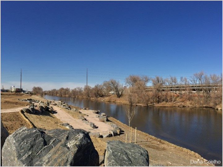 Johnson Habitat Park is one of several restoration projects along the South Platte River.