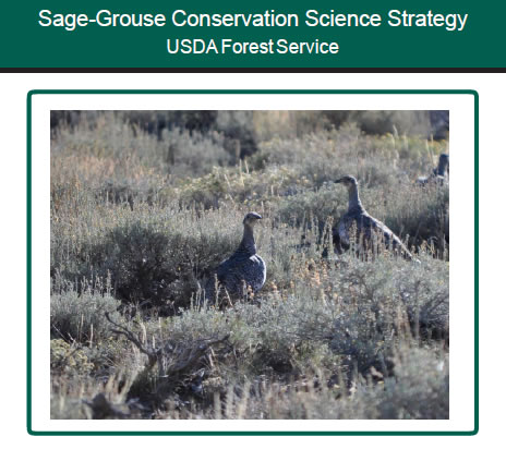 Sage-Grouse Conservation Science Strategy