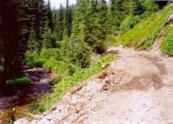 Doe Creek Road before decommissioning.
