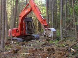 A picture of a mechanical chipper operating in the forest in the Hungry Horse / West Glacier Fuels Reduction Stewardship Contracting project area.