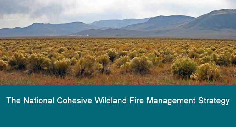 The National Cohesive Wildland Fire Management Strategy