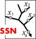 Spatial Statistical Network Models Website Link
